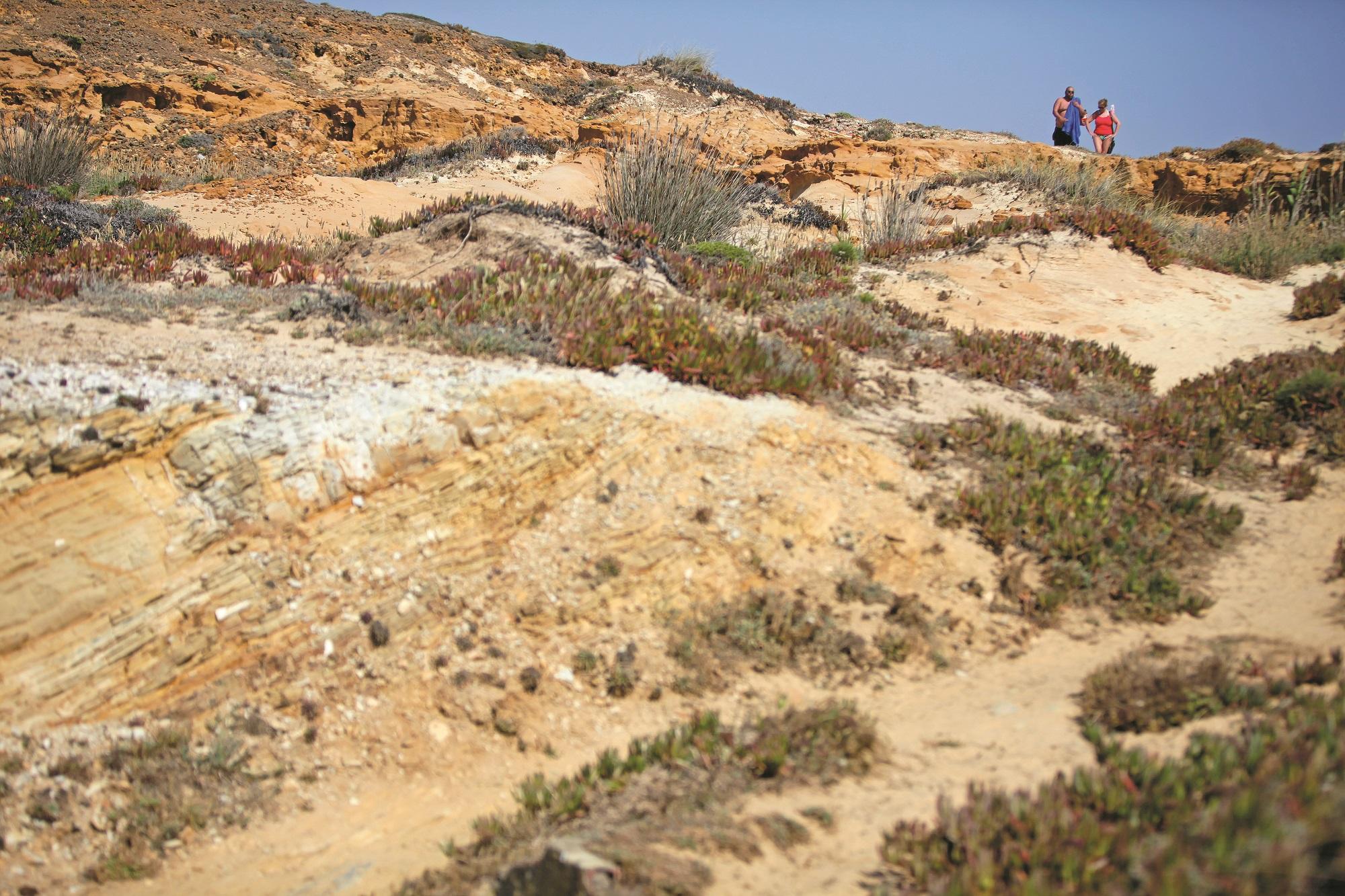 Rota Vicentina é cada vez mais procurada tanto por turistas nacionais como estrangeiros